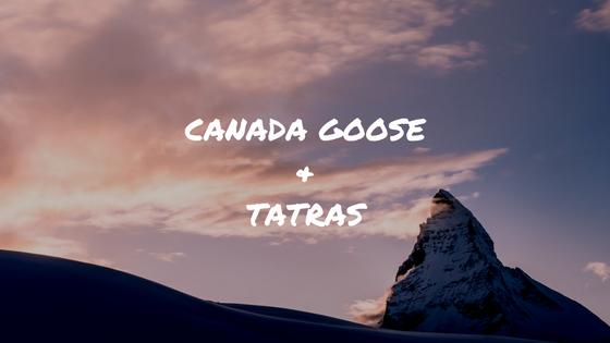カナダグースとタトラスのダウンで悩んでる方へ