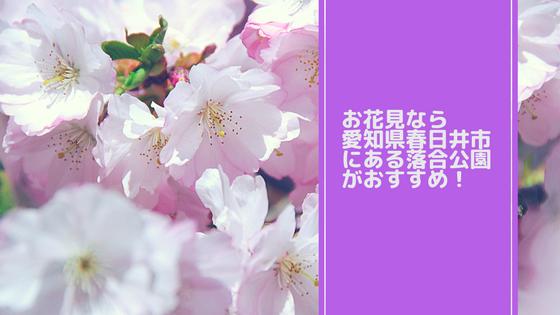 愛知県春日井市の落合公園はお花見もできて家族で楽しめる【写真あり】