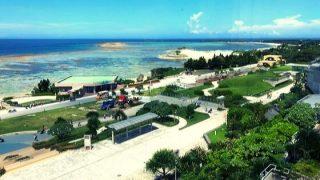 【沖縄旅行2日目】美ら海水族館はイルカショーも無料で子供も大満足!ハナサキマルシェもおすすめ